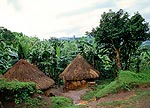 http://www.yahodeville.com/galeria/1999kenia/icon/chatki.jpg